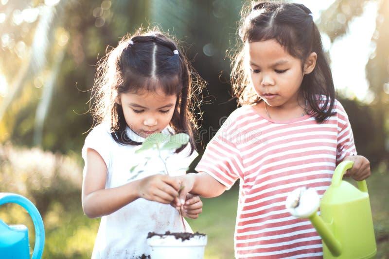 Un albero asiatico di due dei bambini della ragazza della pianta giovani della piantina immagine stock