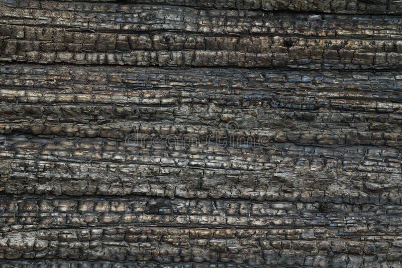 Un albero rotondo, una parete di legno ha annerito da fuoco Fondo immagine stock libera da diritti