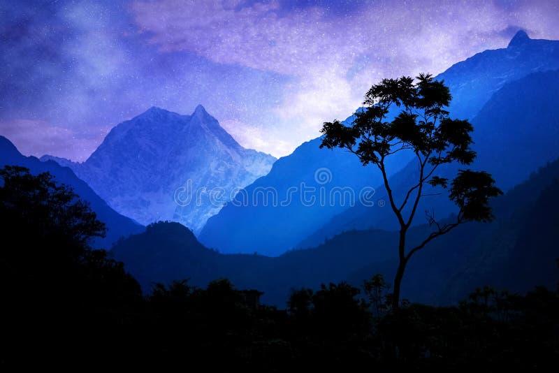 Un albero solo contro lo sfondo delle montagne e del cielo notturno himalayani fotografie stock libere da diritti