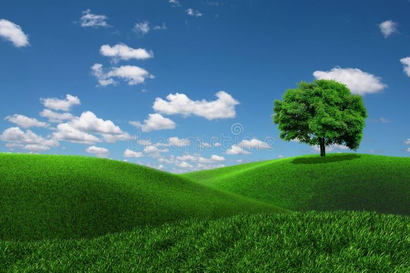 Un albero su un campo di erba illustrazione vettoriale