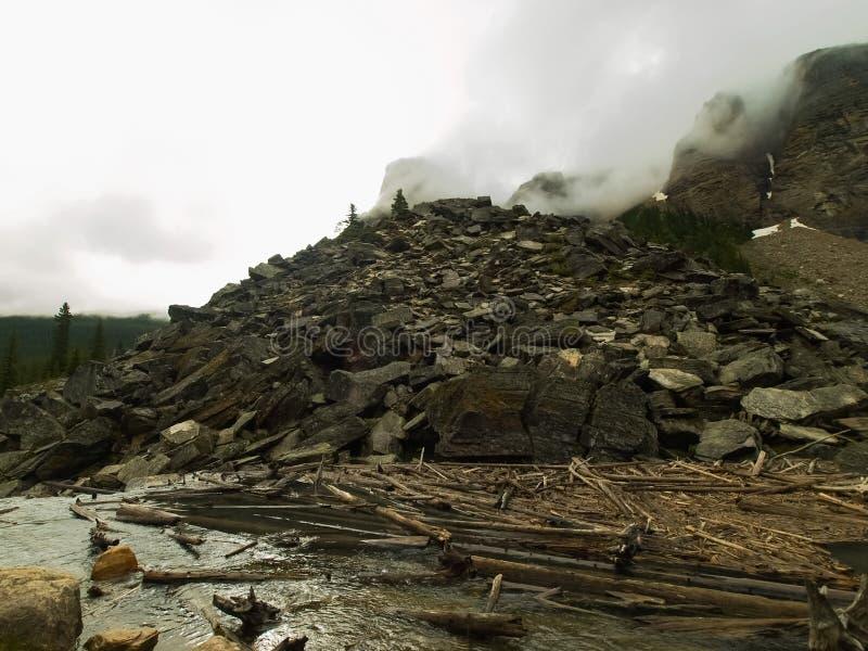Un alliage des rondins et déchets de scierie sur photo libre de droits