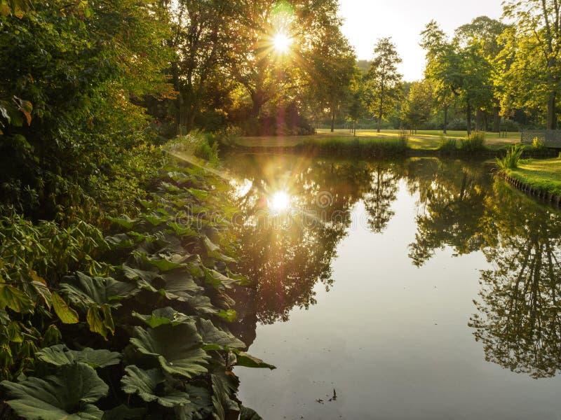 Un amanecer hermoso con la reflexión en el agua de un lago del bosque en el parque de la ciudad de Vlaardingen Rotterdam, Países  foto de archivo
