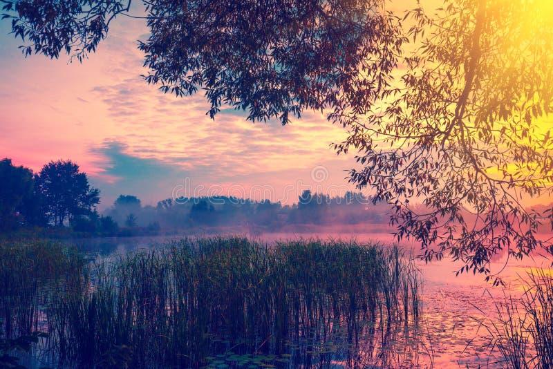 Un amanecer mágico de niebla sobre el lago foto de archivo libre de regalías