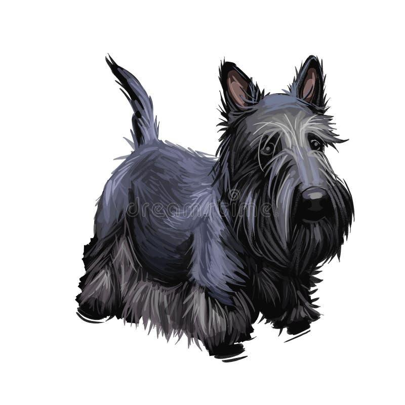 Un animal domestique écossais de Terrier provient de l'illustration de l'art numérique britannique Scolnad doggy Images clipart d illustration libre de droits