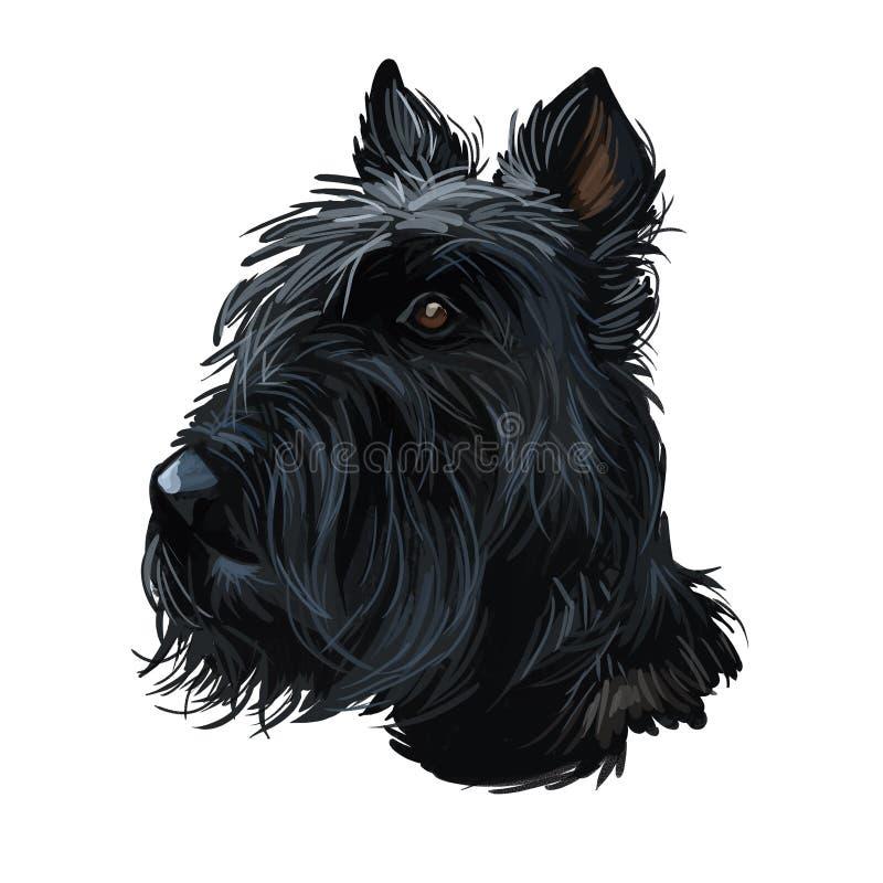 Un animal domestique écossais de Terrier provient de l'illustration de l'art numérique britannique Scolnad doggy Doggy Peinture t illustration stock