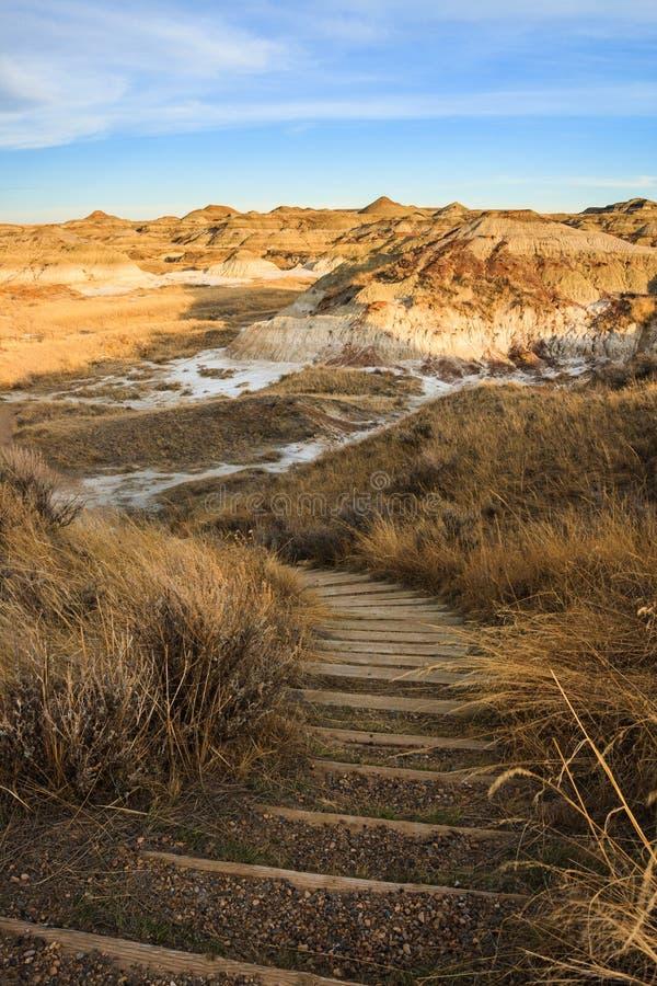 Un anong de traînée les bad-lands en parc provincial de dinosaure images stock