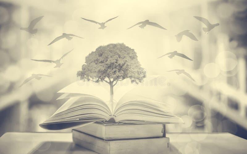 Cerca un libro - Biblioteche Associate | Biblioteche Associate