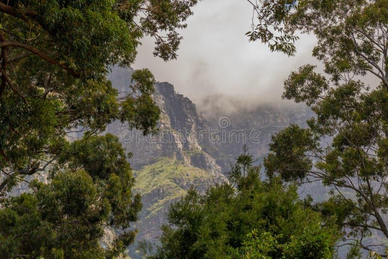 Un aperçu de brouillard a couvert des falaises de montagne images stock