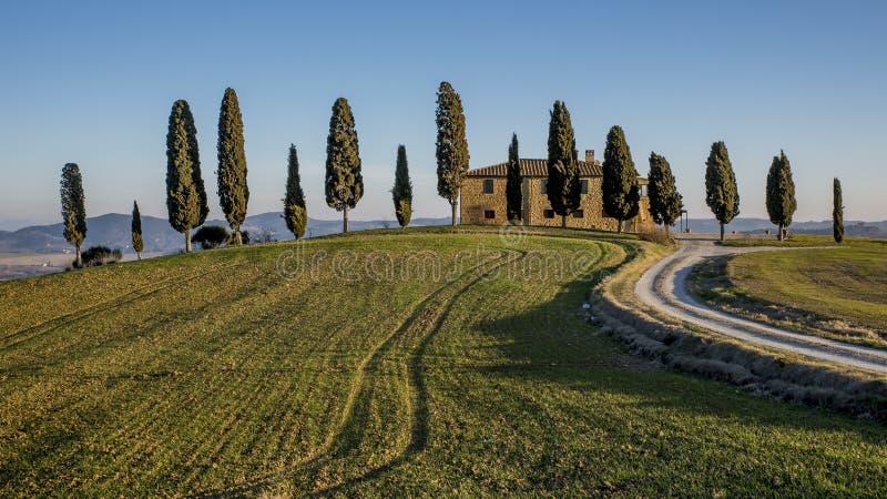 Un aperçu de la campagne près de Pienza, Sienne, Toscane, Italie photos libres de droits