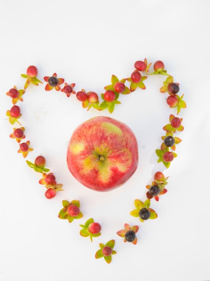 Un Apple un il giorno! fotografia stock