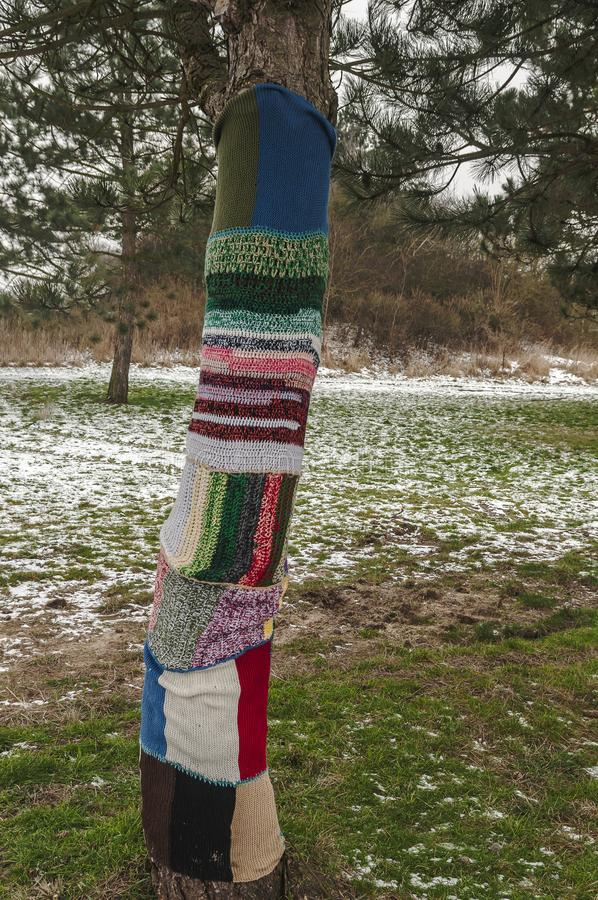 Un arbre enveloppé avec le knit de laine photos libres de droits