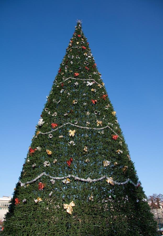 Un arbre et un ciel de Noël très grands images libres de droits