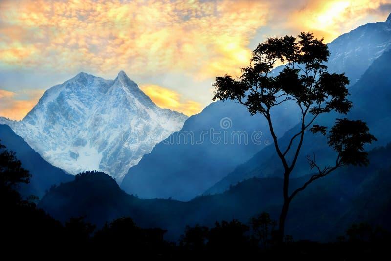 Un arbre isolé dans la perspective des montagnes de l'Himalaya et du coucher du soleil nepal photos stock