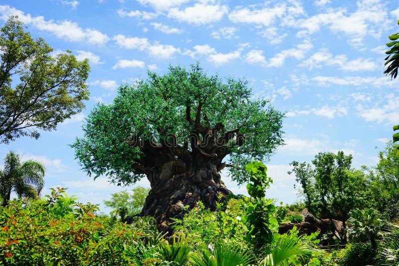 Un arbre énorme images stock