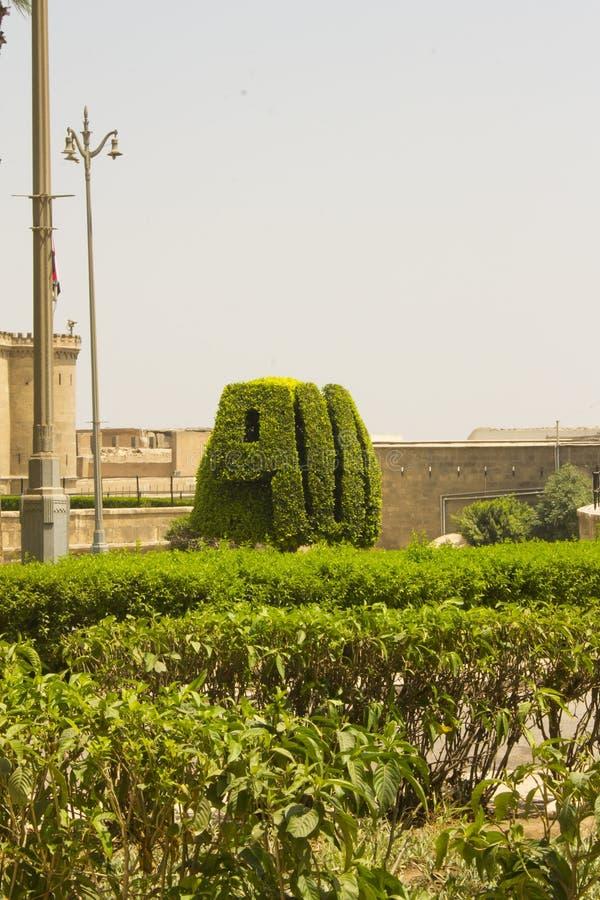Un arbusto tallado en la palabra Allah en árabe foto de archivo