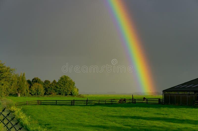 Un arc-en-ciel descend dans les prairies d'une ferme près de Woerden, aux Pays-Bas images libres de droits