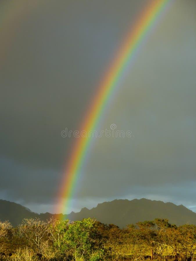 Un arco iris aparece después de la precipitación en la isla hawaiana de Kauai imágenes de archivo libres de regalías