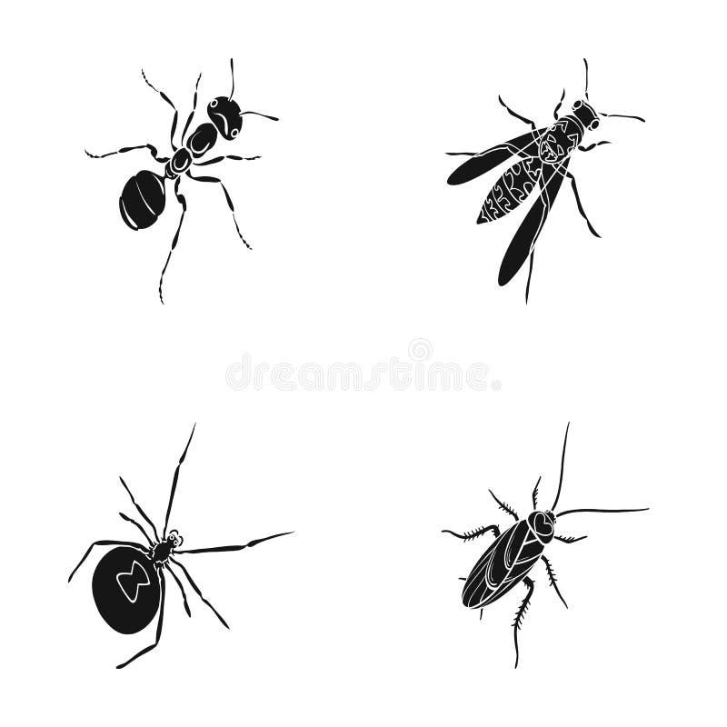 Un arthropode d'insecte illustration stock
