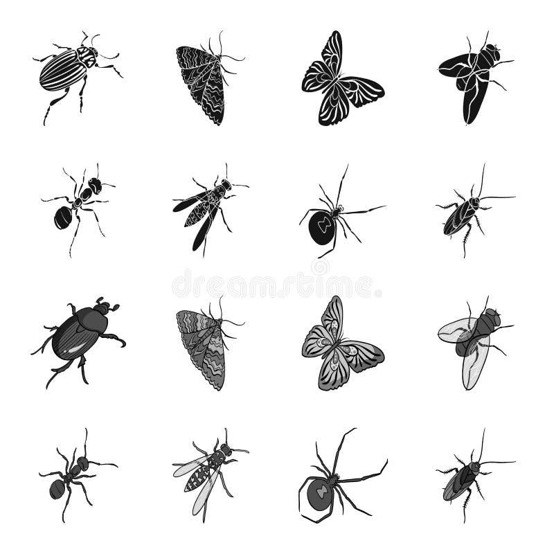 Un arthropode d'insecte, un osa, une araignée, un cancrelat E illustration de vecteur