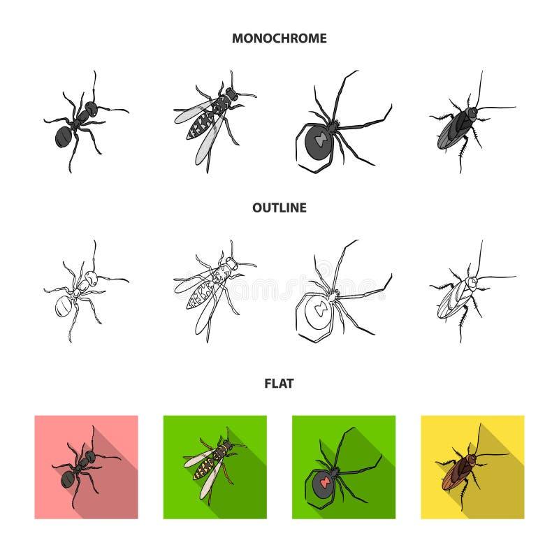 Un arthropode d'insecte, un osa, une araignée, un cancrelat Les insectes ont placé des icônes de collection dans l'appartement, c illustration de vecteur