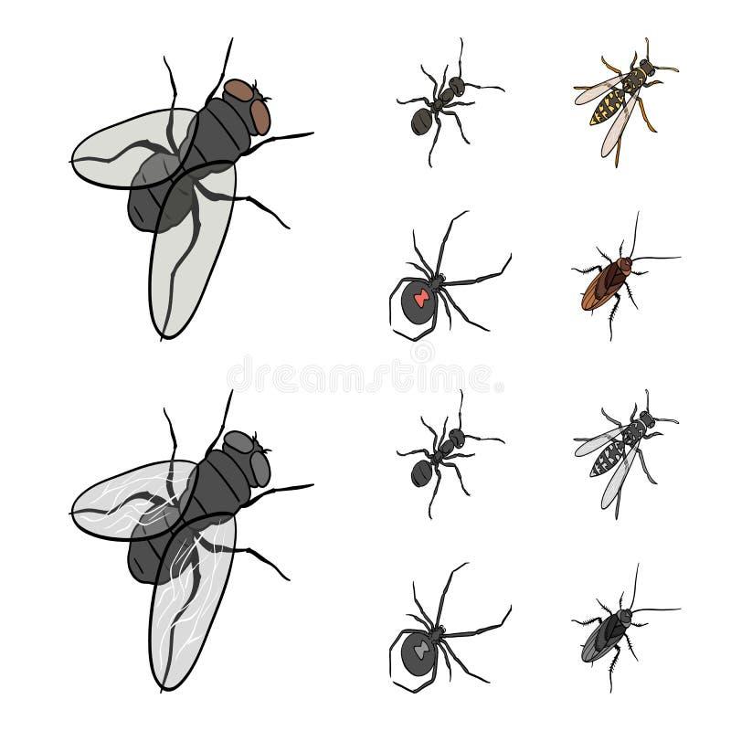 Un arthropode d'insecte, un osa, une araignée, un cancrelat Les insectes ont placé des icônes de collection dans la bande dessiné illustration de vecteur