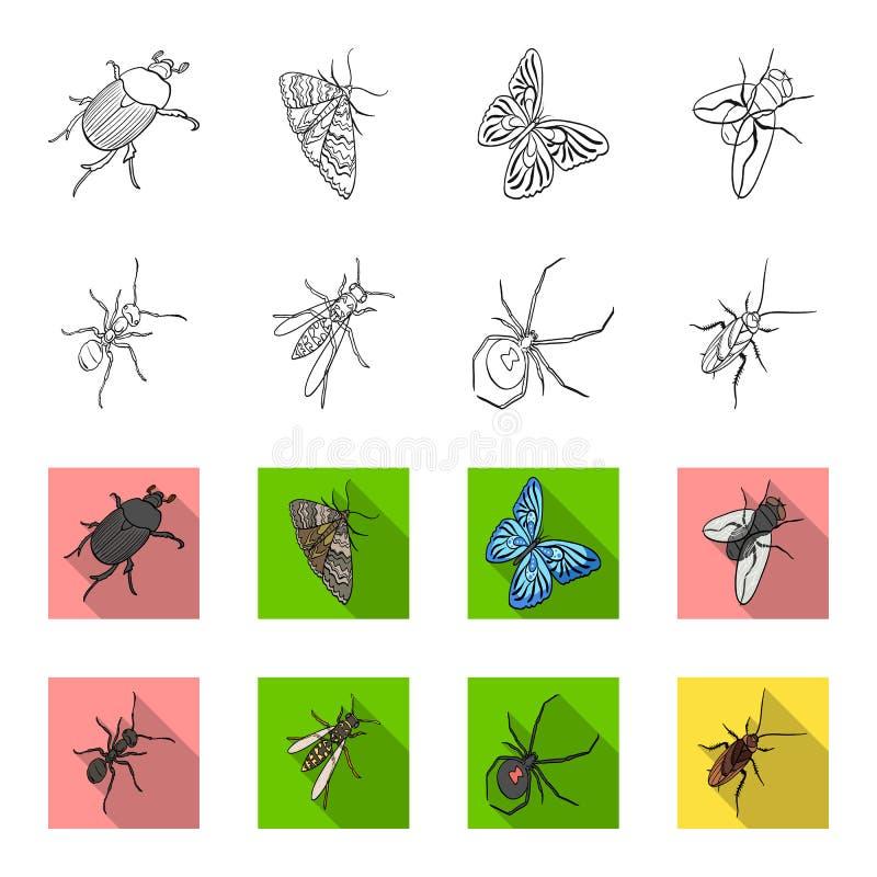 Un arthropode d'insecte, un osa, une araignée, un cancrelat Les insectes ont placé des icônes de collection dans le contour, symb illustration libre de droits