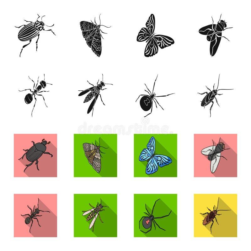 Un arthropode d'insecte, un osa, une araignée, un cancrelat Les insectes ont placé des icônes de collection dans le noir, actions illustration libre de droits