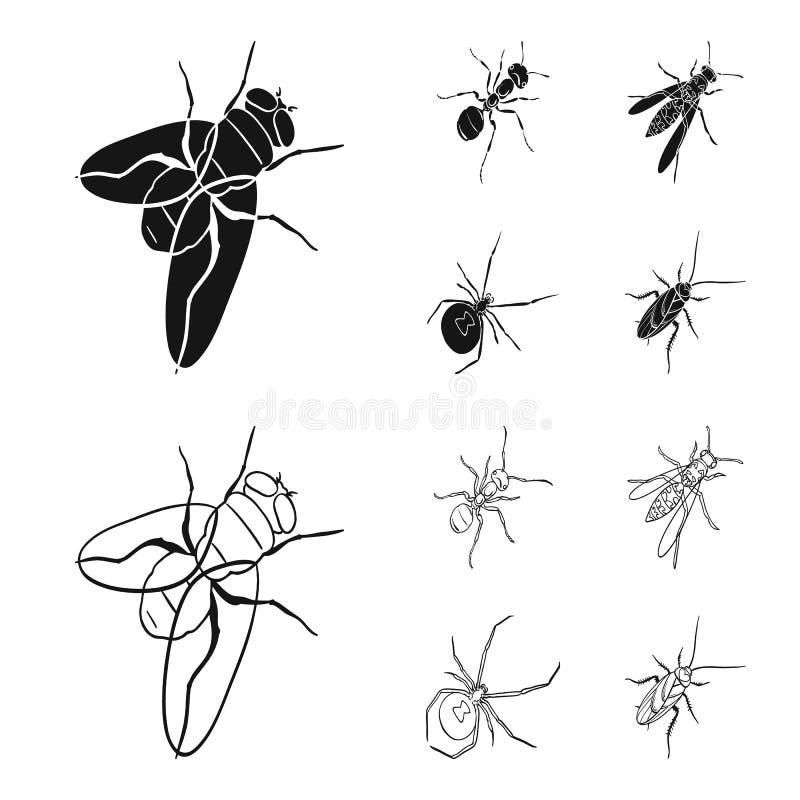 Un arthropode d'insecte, un osa, une araignée, un cancrelat Les insectes ont placé des icônes de collection dans le noir, symbole illustration libre de droits