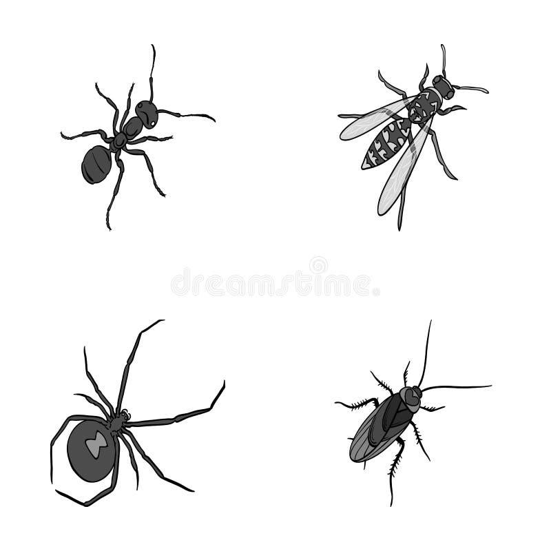 Un arthropode d'insecte, un osa, une araignée, un cancrelat Les insectes ont placé des icônes de collection en stock monochrome d illustration de vecteur