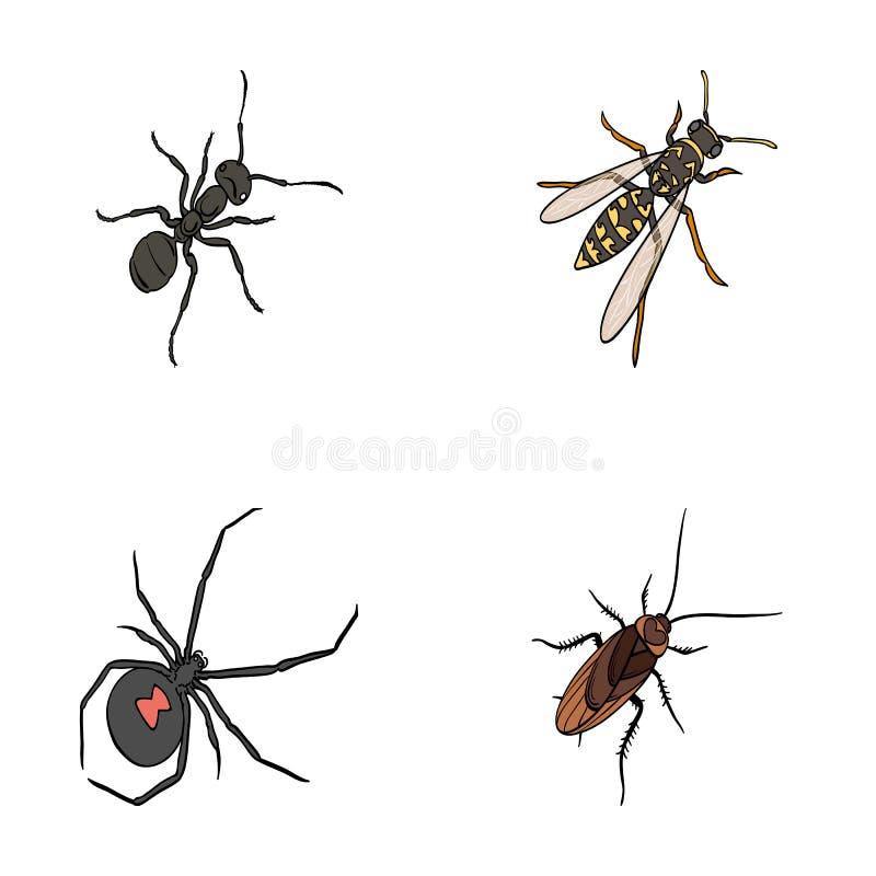 Un arthropode d'insecte, un osa, une araignée, un cancrelat Les insectes ont placé des icônes de collection en stock de symbole d illustration de vecteur