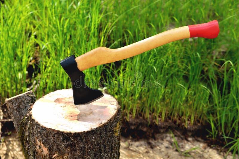 un'ascia a forma di bella attacca fuori in un albero, con una maniglia gialla, su uno sfondo naturale immagine stock libera da diritti