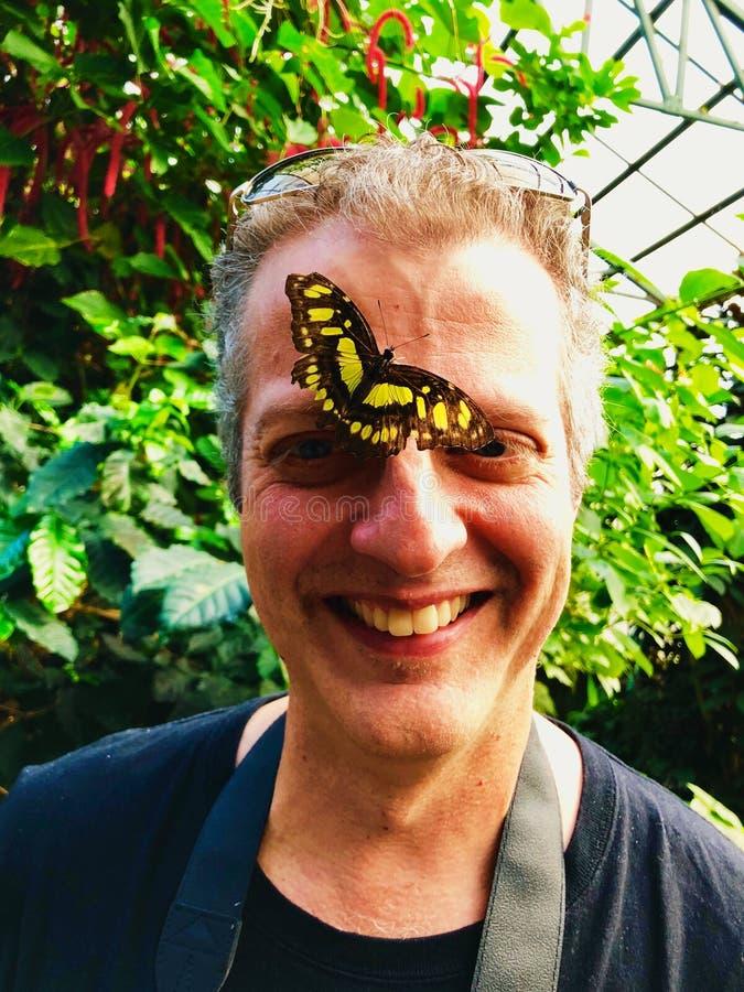 Un atterrissage jaune de papillon de papier de riz sur le nez d'un homme images libres de droits