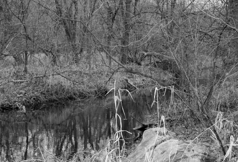 Un automne d'apparence de rivière dans le Midwest photo libre de droits