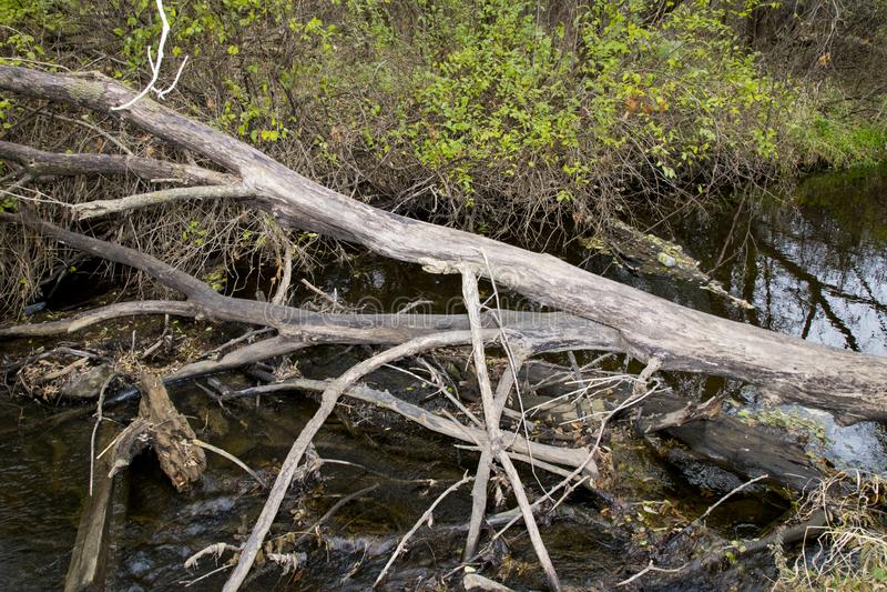 Un automne d'apparence de rivière dans le Midwest photographie stock