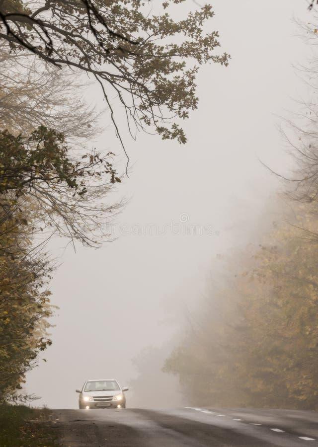 Un'automobile con i fari sulla strada nella foresta autunnale nebbiosa immagini stock
