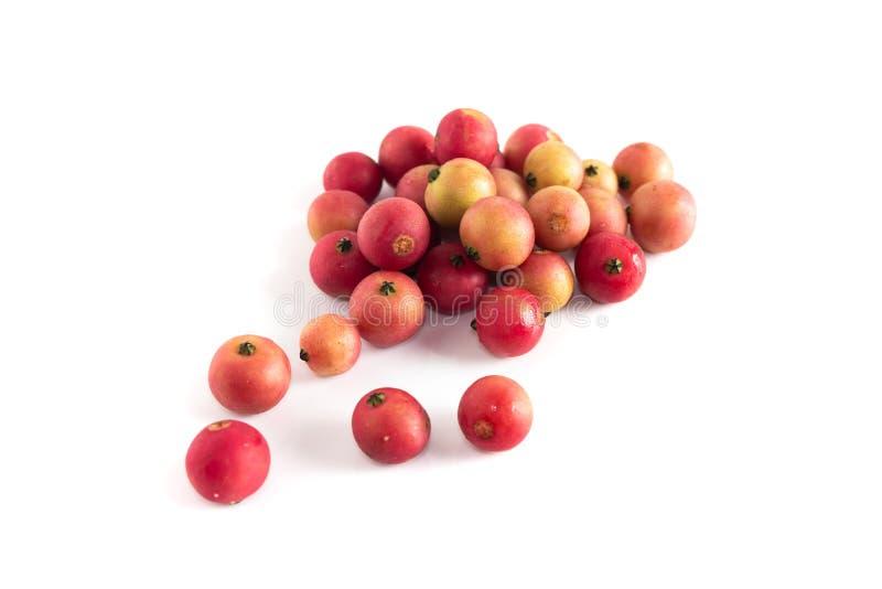 Un autre fruit de cerise jamaïcaine est Cherry Calabura malais Confiture sur un fond blanc photo stock