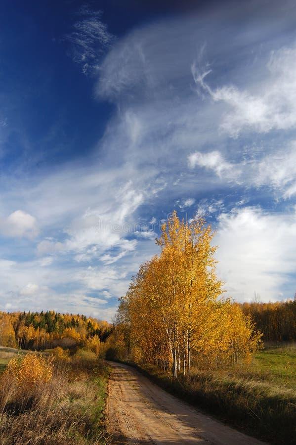 Un autunno è nel paese immagine stock