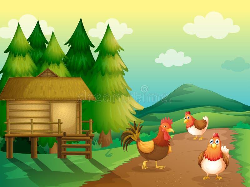 Un'azienda agricola con i polli e una casa indigena royalty illustrazione gratis