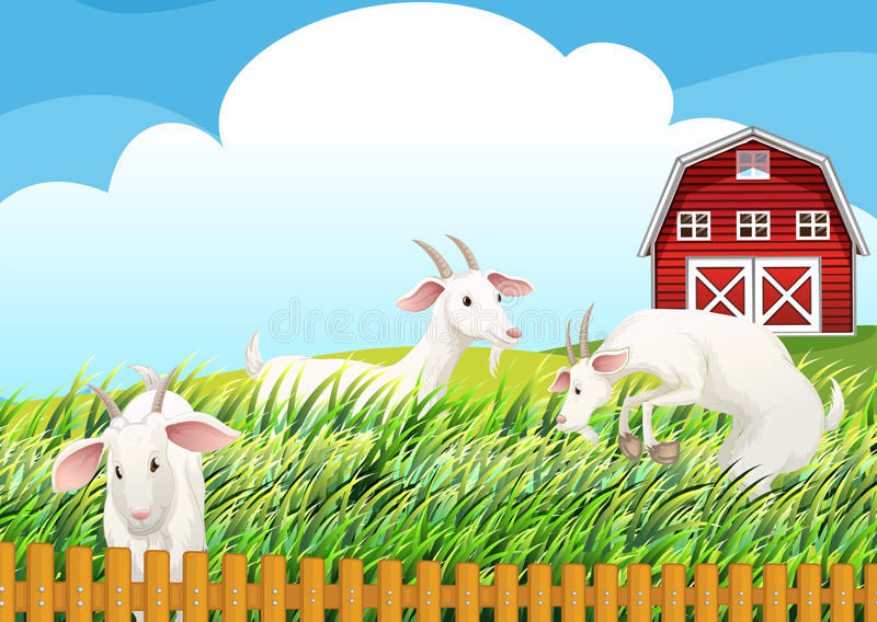 Un'azienda agricola con tre capre royalty illustrazione gratis