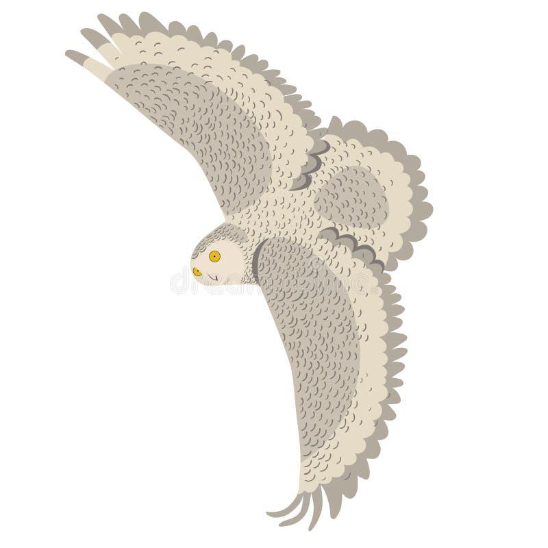 Un búho polar en vuelo Gráficos de vector aislados en el fondo blanco ilustración del vector