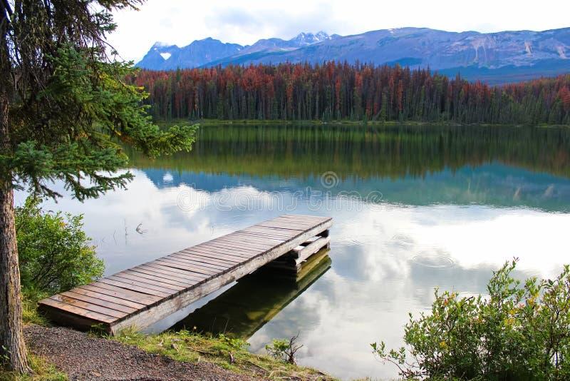 Un bacino accanto ad un lago della montagna rocciosa immagini stock libere da diritti