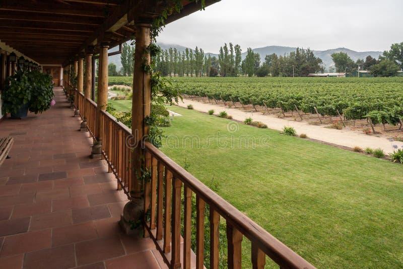 Vignoble en vallée Chili de Colchagua images libres de droits