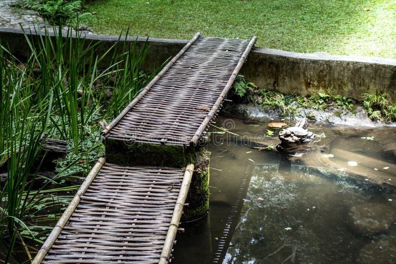 Un bambú del camino fotografía de archivo