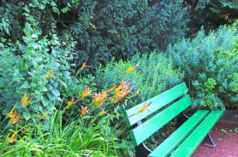 Un banc de parc vert images stock