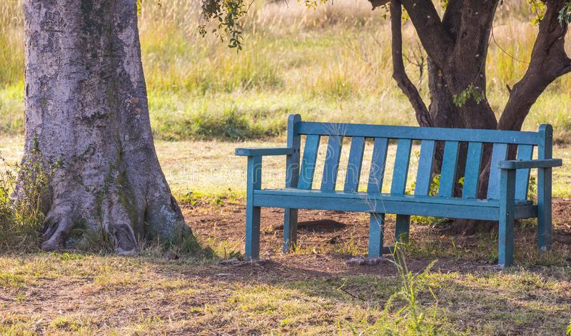 Un banc de parc vert dans une tache louche dehors photo libre de droits