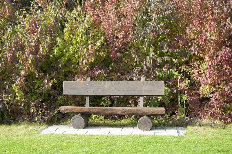 Un banc en bois à un terrain de golf en automne, Allemagne image libre de droits