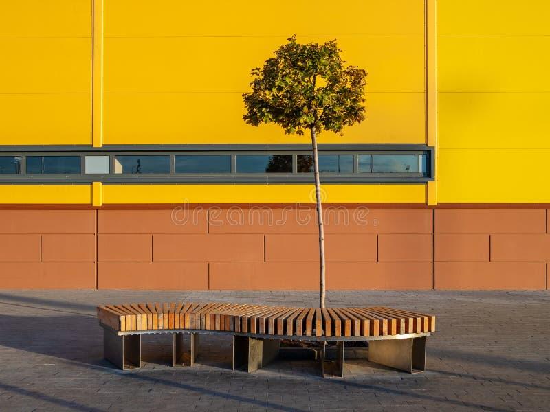 Un banc en bois incurvé et un petit arbre solitaire près de la paroi jaune d'un immeuble industriel lors d'une journée ensoleillé images stock