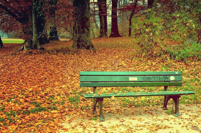 Un banc vert romantique au milieu d'automne photo stock