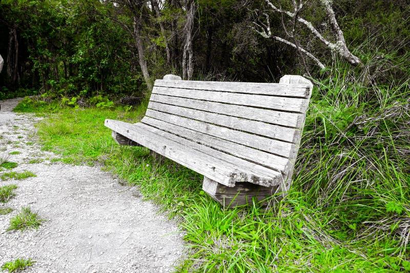 Un banco al lado del lago, con diferentes formas de color Un banco sin gente en el que sentarse perderá su propósito como banco A fotografía de archivo