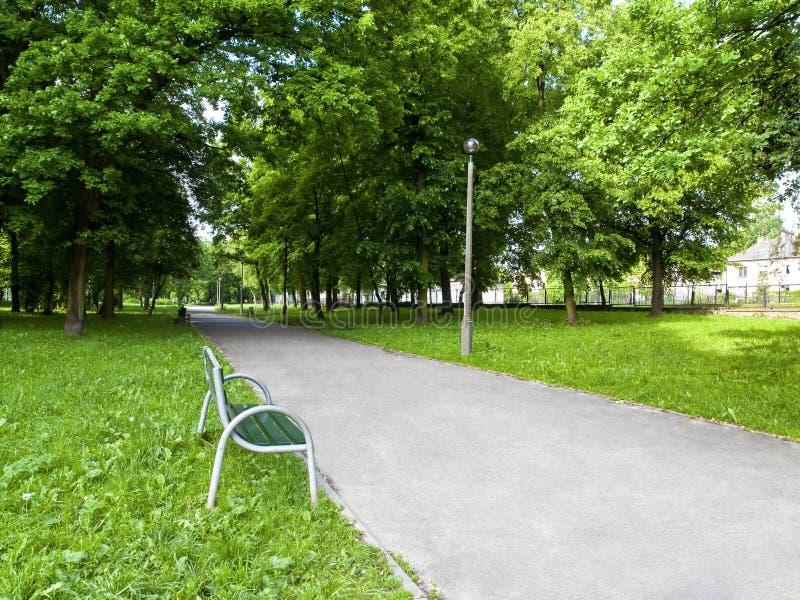Un banco en el callejón del parque de la ciudad. imagenes de archivo